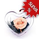Srdce - Stabilizovaná růže Standart - lila